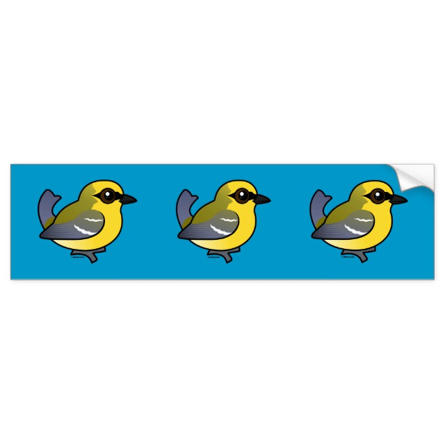 Blue-winged Warbler clipart #9, Download drawings