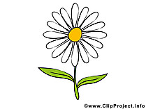 Blume clipart #7, Download drawings