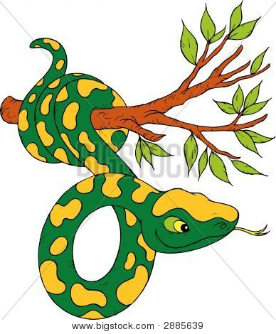 Boa Constrictor clipart #5, Download drawings