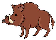 Boar clipart #12, Download drawings
