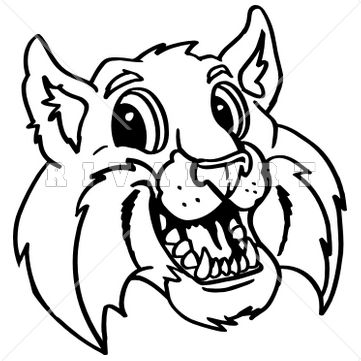 Bobcat clipart #8, Download drawings