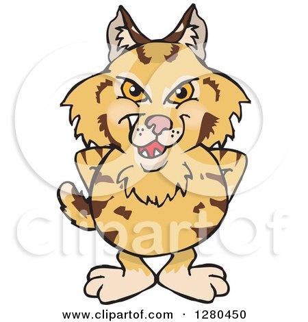 Bobcat clipart #6, Download drawings
