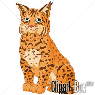 Bobcat clipart #1, Download drawings