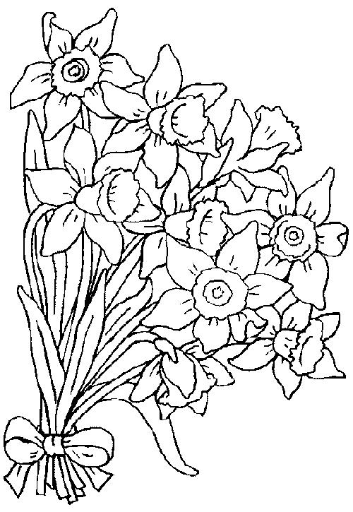 Boguet coloring #1, Download drawings