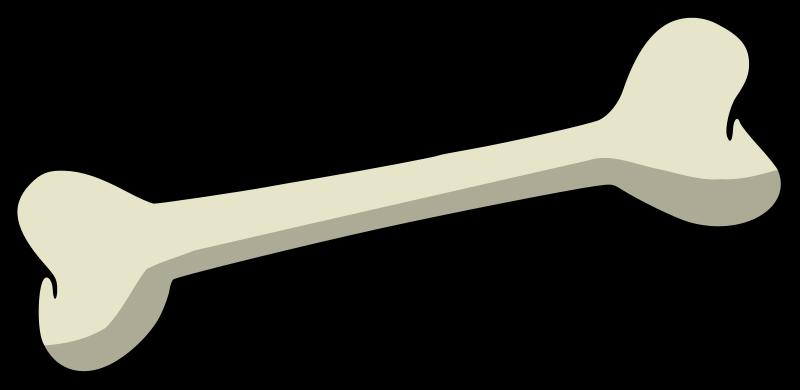 Bones clipart #17, Download drawings