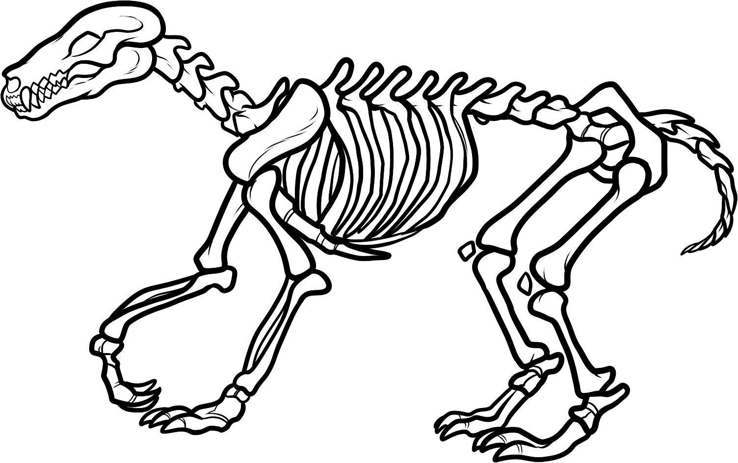 Bones clipart #9, Download drawings
