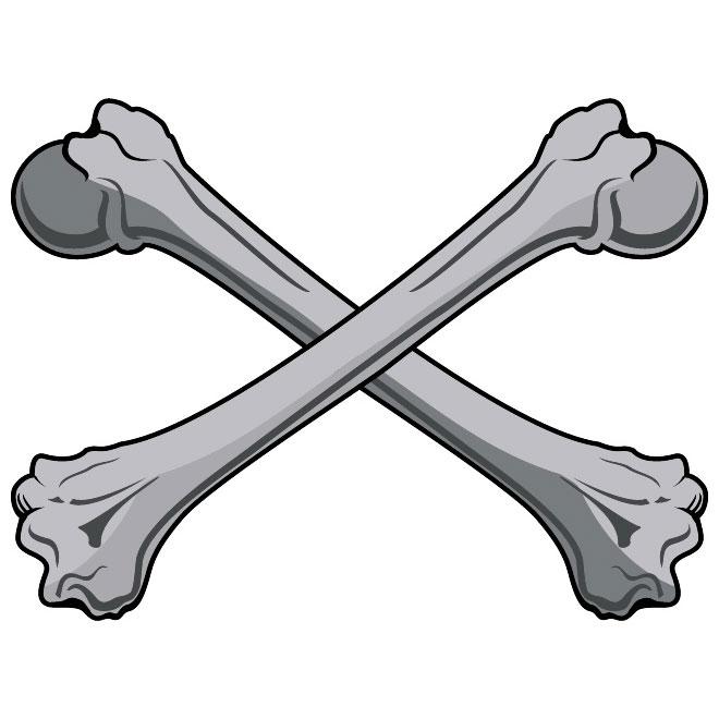 Bones clipart #12, Download drawings