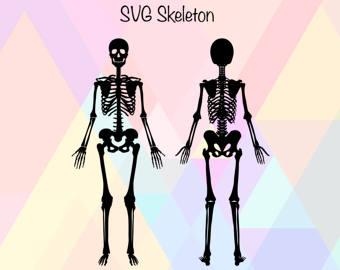 Bones svg #2, Download drawings