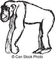 Bonobo clipart #19, Download drawings