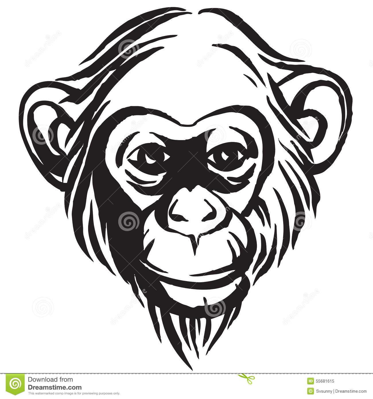 Bonobo clipart #11, Download drawings