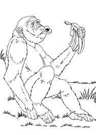 Bonobo coloring #12, Download drawings