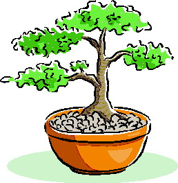 Bonsai clipart #20, Download drawings