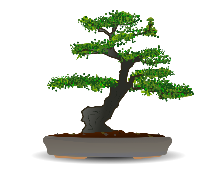 Bonsai clipart #4, Download drawings