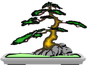 Bonsai clipart #19, Download drawings
