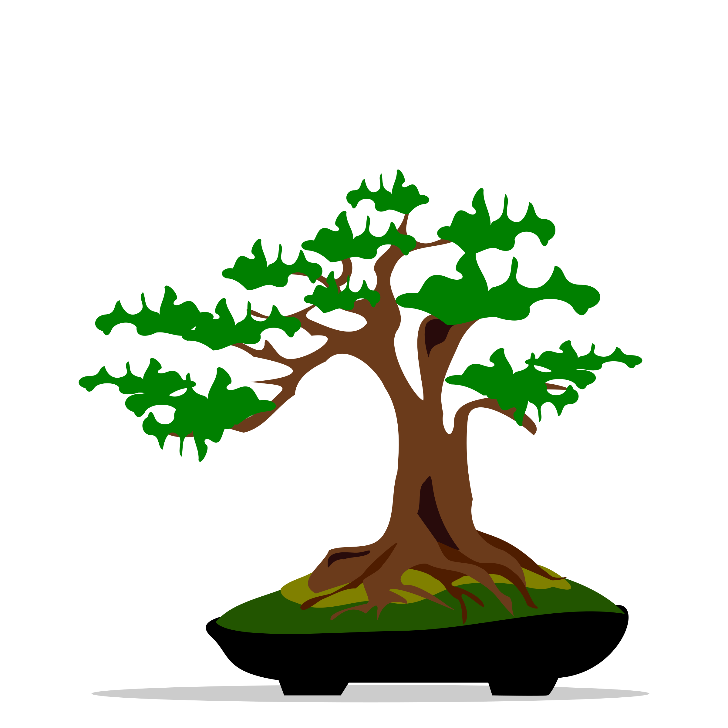 Bonsai clipart #7, Download drawings