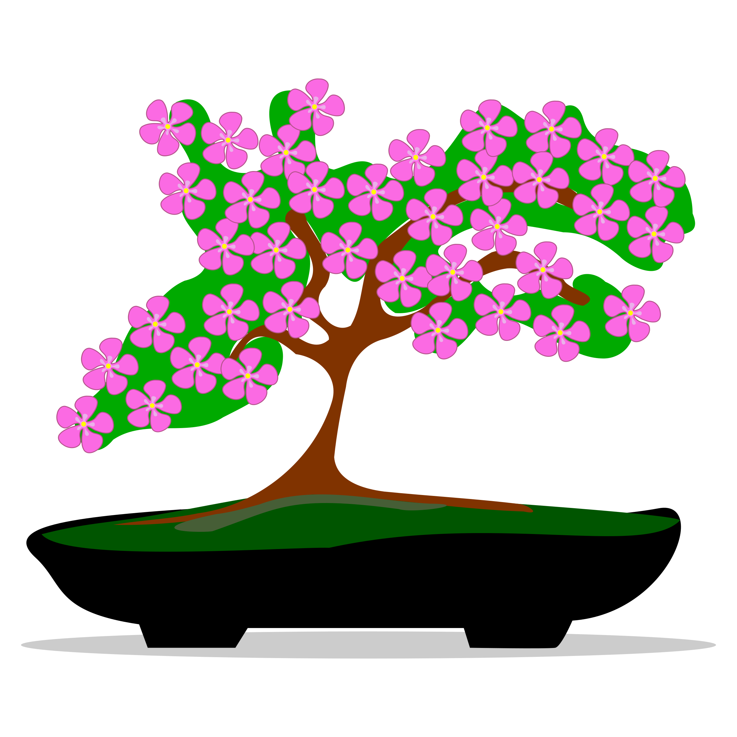 Bonsai clipart #5, Download drawings