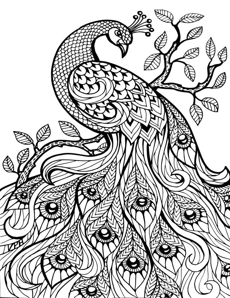 Book Art coloring #13, Download drawings