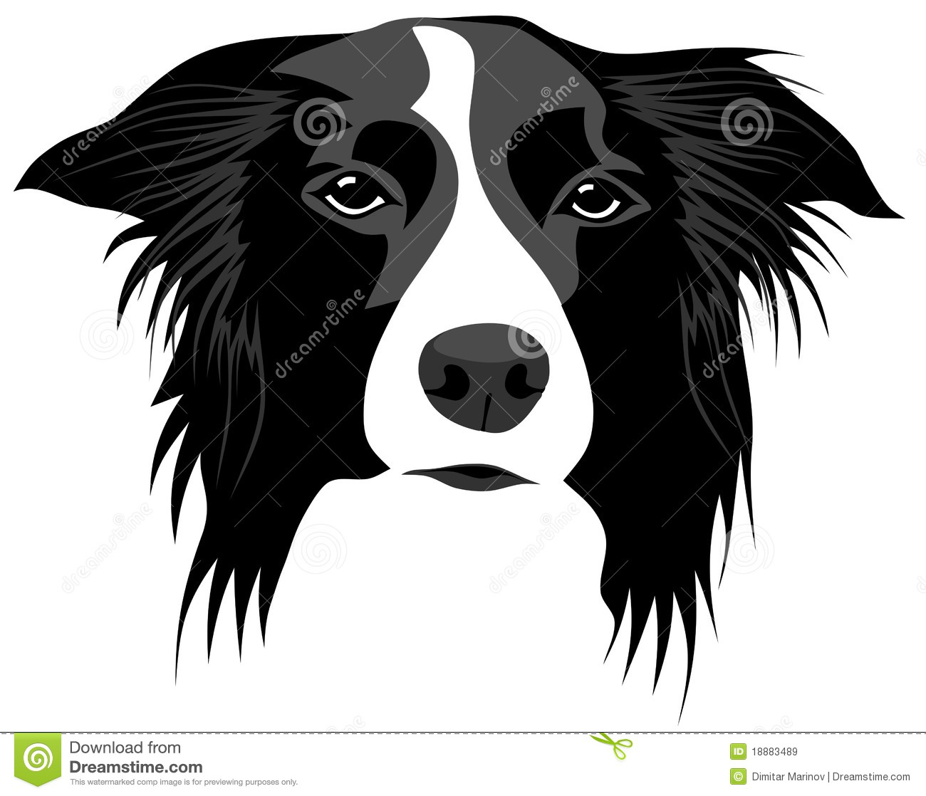 Border Collie clipart #13, Download drawings