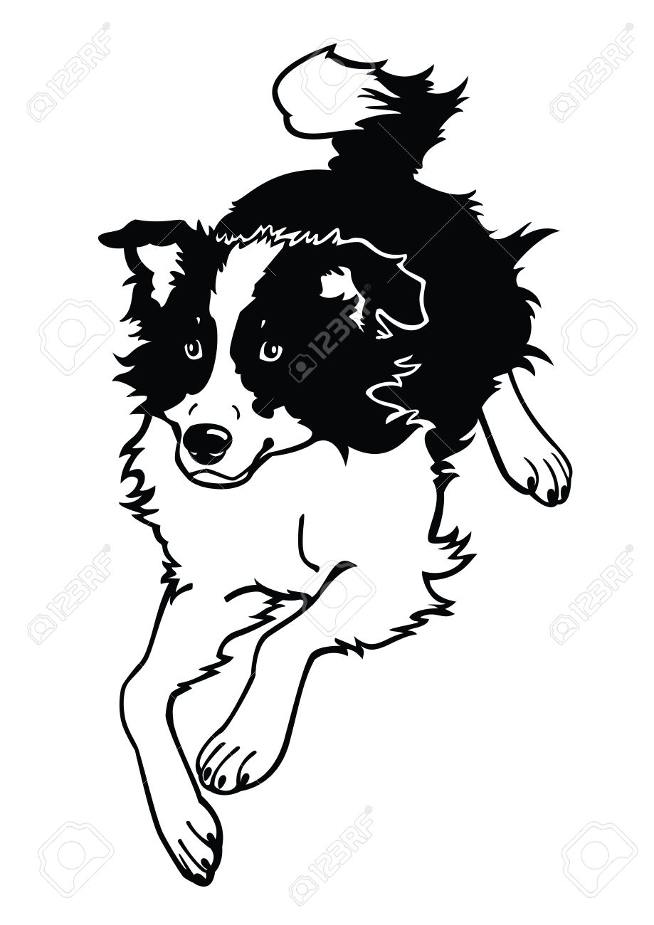 Collie clipart #5, Download drawings