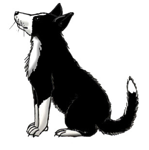 Border Collie clipart #7, Download drawings