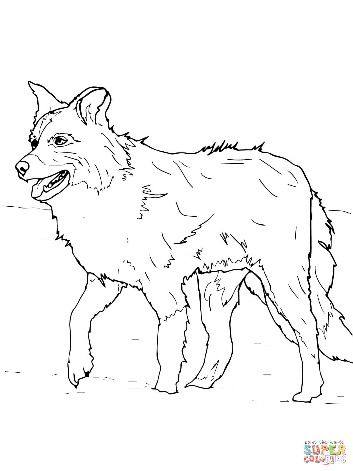 Collie coloring #7, Download drawings