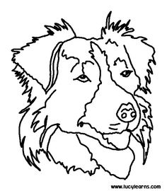 Collie coloring #3, Download drawings