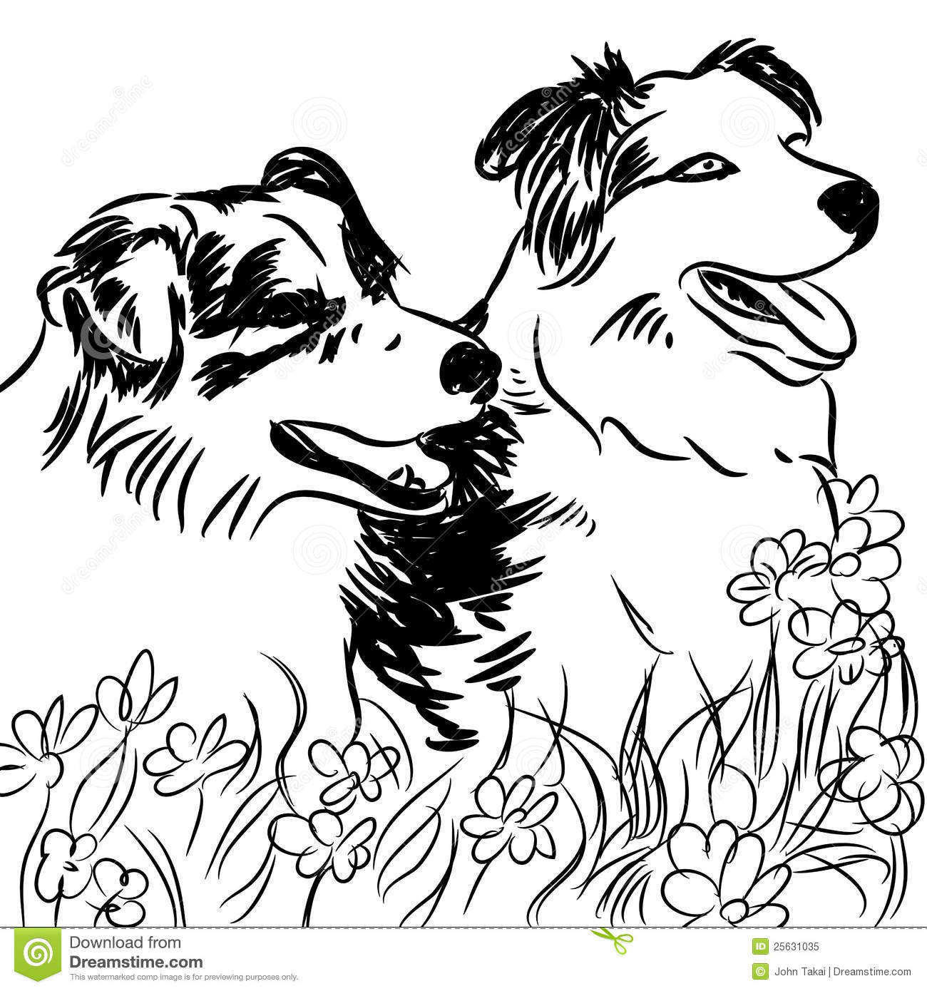 Collie coloring #15, Download drawings