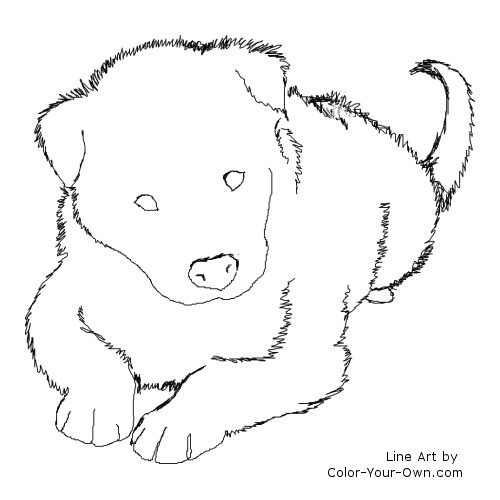 Collie coloring #17, Download drawings