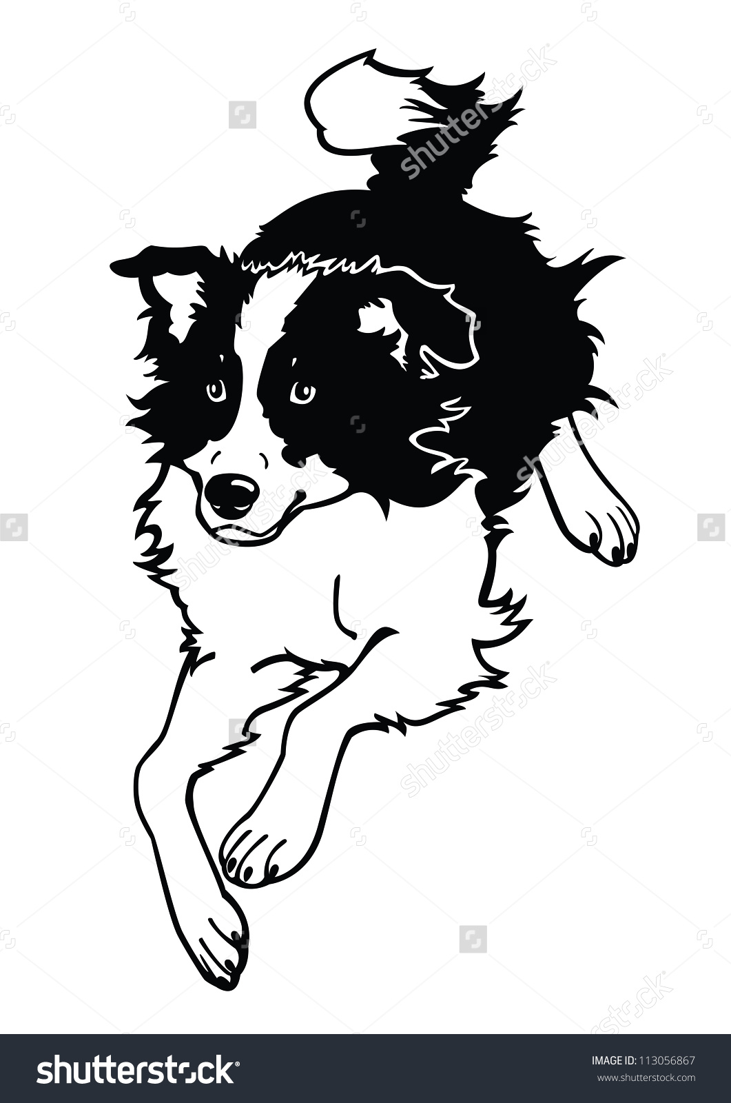 Border Collie svg #1, Download drawings