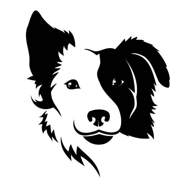 Border Collie svg #17, Download drawings