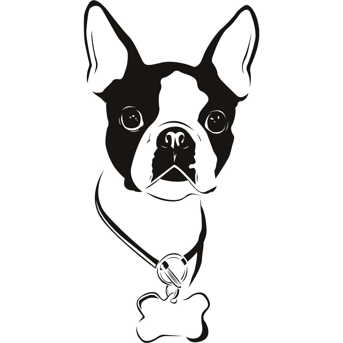Boston Terrier clipart #18, Download drawings