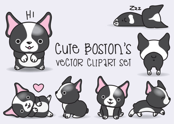 Boston Terrier clipart #5, Download drawings