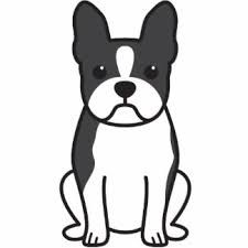 Boston Terrier clipart #20, Download drawings