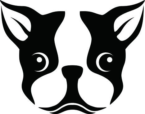 Boston Terrier clipart #15, Download drawings
