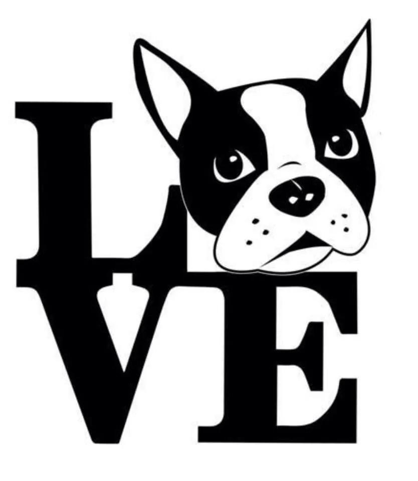 Boston Terrier svg #9, Download drawings