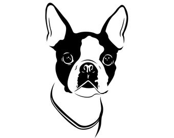 Boston Terrier svg #227, Download drawings