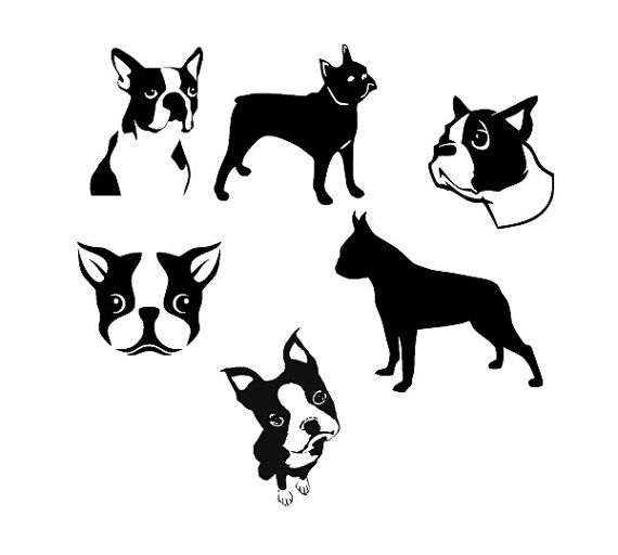 Boston Terrier svg #222, Download drawings
