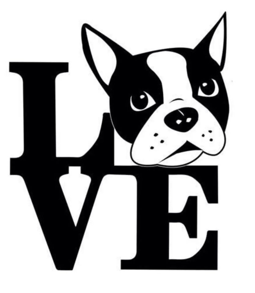 Boston Terrier svg #229, Download drawings