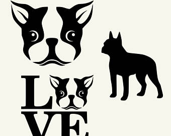 Boston Terrier svg #17, Download drawings