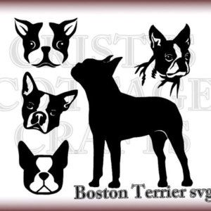 Boston Terrier svg #228, Download drawings