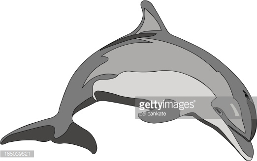 Bottlenose Dolphin clipart #9, Download drawings