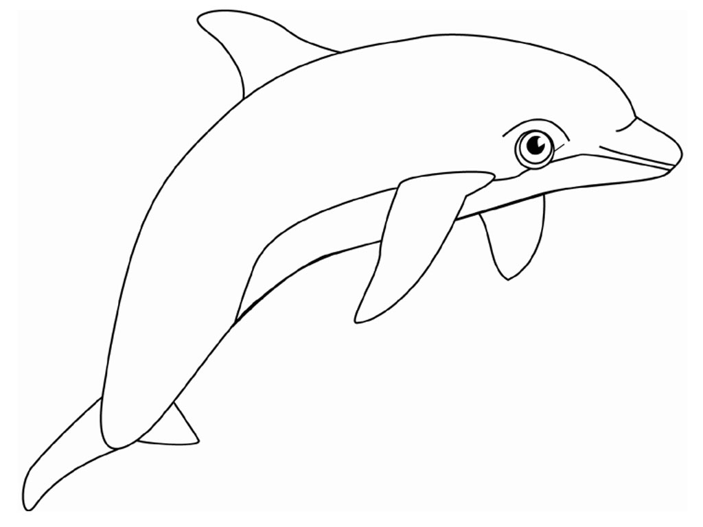 Dolphin coloring #3, Download drawings