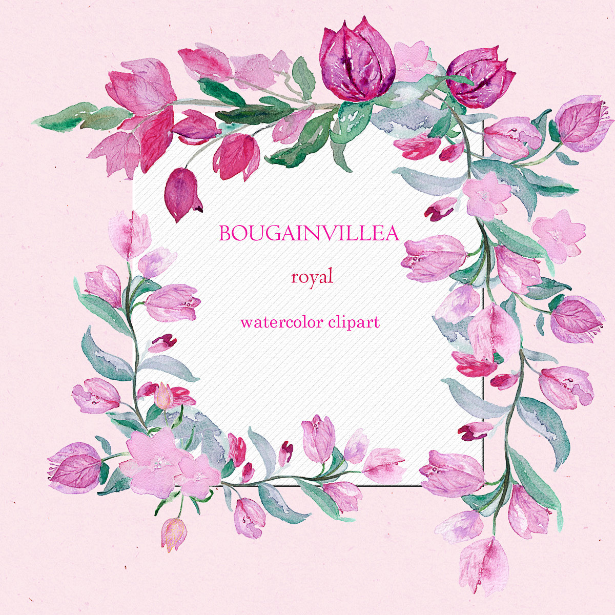 Bougainvillea svg #5, Download drawings