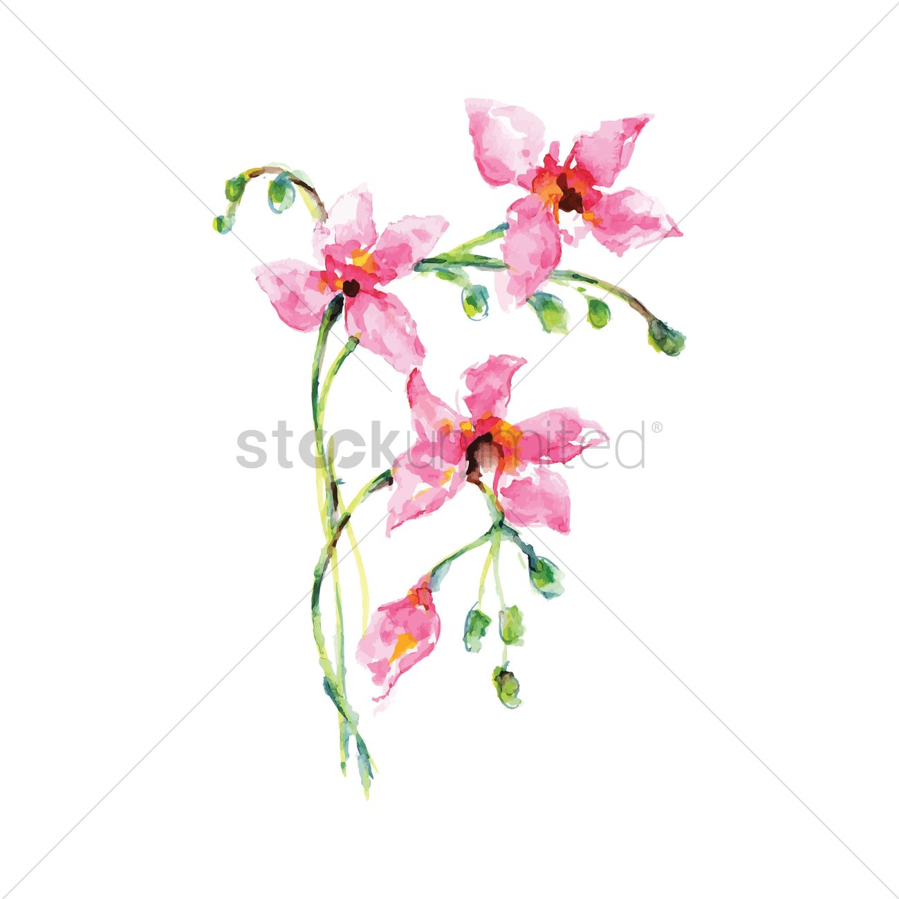 Bougainvillea svg #15, Download drawings
