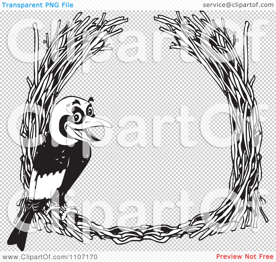 Bowerbird clipart #18, Download drawings
