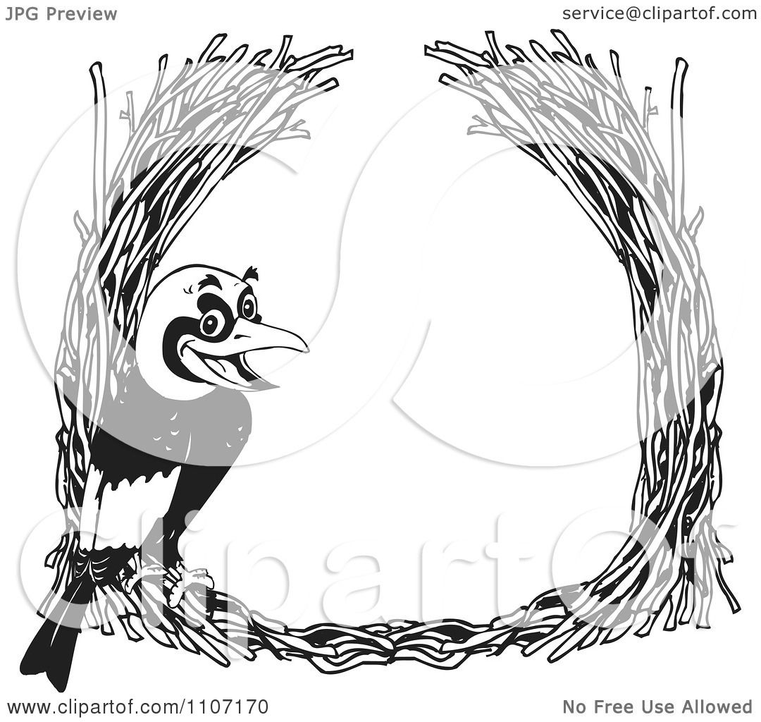 Bowerbird clipart #12, Download drawings