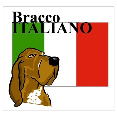 Bracco Italiano clipart #20, Download drawings