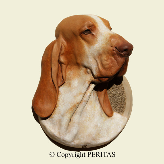Bracco Italiano clipart #4, Download drawings