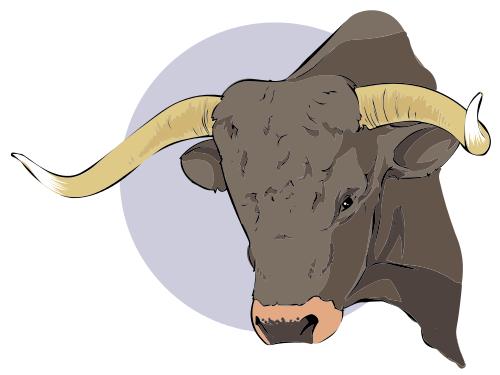 Brahman Bull clipart #4, Download drawings