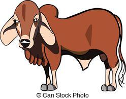 Brahman Bull clipart #2, Download drawings